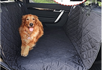 Top 10 Best Dog Car Seat Covers in 2018