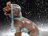Top 10 Best Waterproof Dog Raincoats Review For 2018