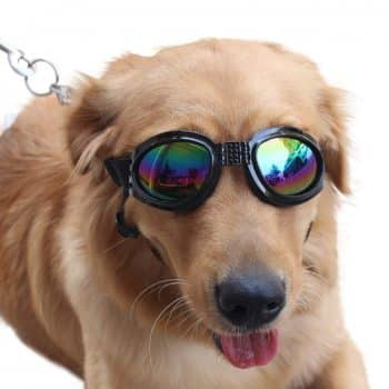 NACOCO Pet Glasses Dog Sunglasses