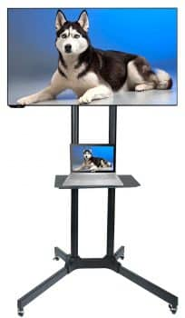 Husky Mount Mobile TV Stand