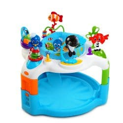 Best Baby Einstein Toys