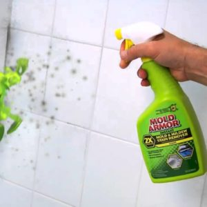 Mildew Cleaner