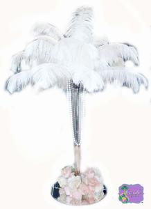11- Exotic Feathers Ostrich Feathers