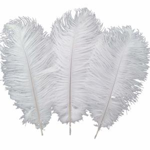 4- Sowder White Ostrich Feathers