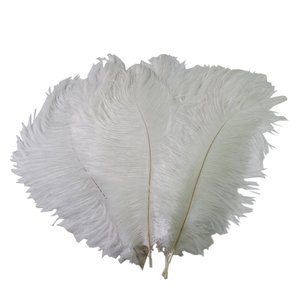 5- Sealike 100 Pcs Ostrich Feather