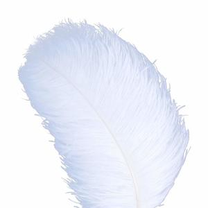 9- AWAYTR 10pcs Natural Ostrich Feathers