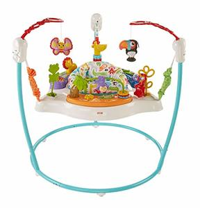 10- Fisher-Price Animal Activity Baby Jumperoo