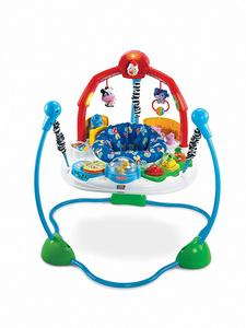 3- Fisher-Price Jumperoo Laugh & Learn