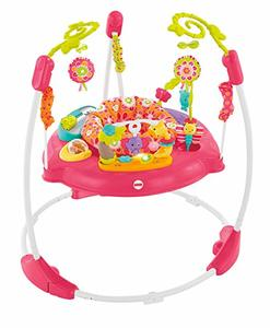 5- Fisher-Price Baby Jumperoo Pink Petals