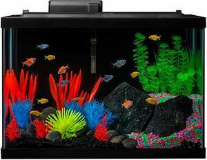 8- GloFish Aquarium Kit Fish Tank