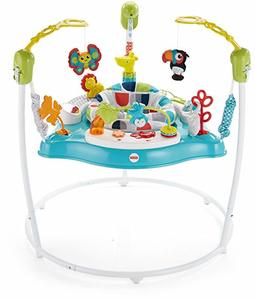 9- Fisher-Price Color Climbers Jumperoo