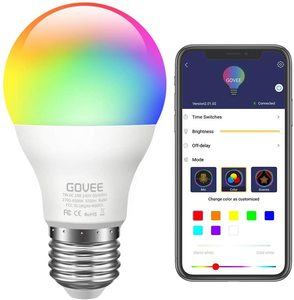 #1. Govee LED
