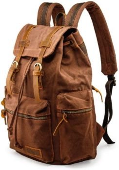 4. GEARONIC TM 21L Vintage Canvas Backpack