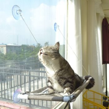 #5. PEFUNY Cat Window Perch Hammock